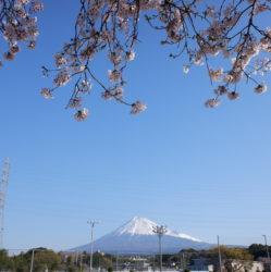 静岡県ウエイトリフティング協会
